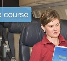 Your Personal One to One Ground Course by Flying-Courses