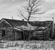 Forgotten In Black And White by Gary Benson