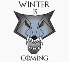 Winter is Coming  by 0n3-panda
