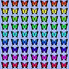 Colorful Butterflies on Lilac by Greenbaby