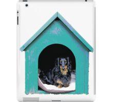 Doghouse iPad Case/Skin