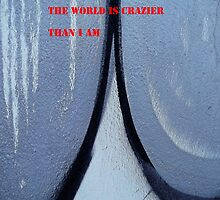 Message 17 - THE WORLD IS CRAZIER THAN I AM by TonyBroadbent