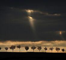 Light from the sky by JBlaminsky
