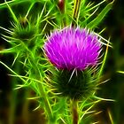 Fractal Thistle by lisa1970