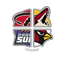 Arizona Pro Sports TETRAlogy! Cardinals, Diamondbacks, Coyotes and Suns by SplitDecision