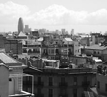 View from Casa Mila by TwistedtheClown
