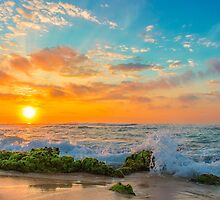 Sandy Beach Sunrise 3 by Leigh Anne Meeks