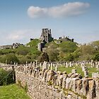 Corfe Castle, Dorset, UK by Pauline Tims