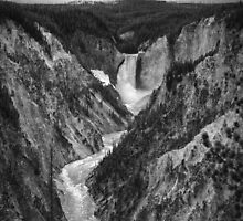 Yellowstone Falls by yellocoyote