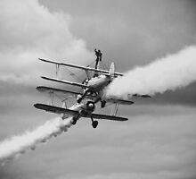 Bi-Plane Fury by SamsonDavid