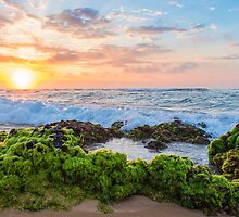 Sandy Beach Sunrise 2 by Leigh Anne Meeks
