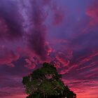 Warrandyte Sunset IX by Adam Le Good