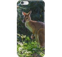 Wallaby With Joey iPhone Case/Skin