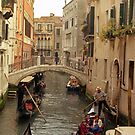 Venice Gondolas by Larry3