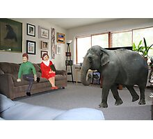 I know you always avoid conflict, but seriously, we really should address the elephant in the room. Photographic Print