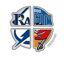 Orlando / Tampa Bay Florida Pro Sports TETRAlogy! Orlando Magic, Tampa Bay Buccaneers, Rays and Lightning by Sochi