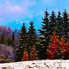 Canadian Spring by Terry Bailey