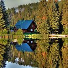 Cariboo Cabin by Skye Ryan-Evans