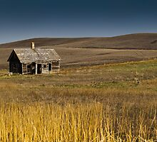 Little House on the Prairie by SandraNightski
