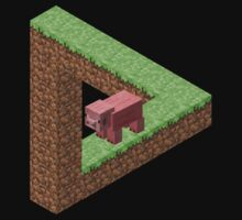 Impossible Minecraft Triangle by TheSilentBadger
