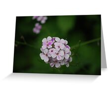 Purple Cluster Greeting Card