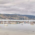 Apollo Bay Panorama by Adrian Paul