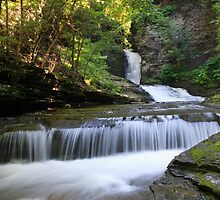 Deckertown Falls, Village of Montour Falls, New York by DArthurBrown