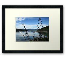 Waikawa Bay Framed Print