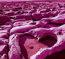 Pink Heart by Heidi Stewart