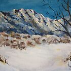 Snowy Village by Vanessa Zakas