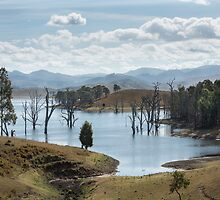 Rural New South Wales Australia by Allport Photography