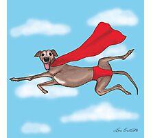 Adopt a Super Hero! Photographic Print