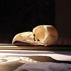 Vigil to Fallen Hunters 1 by Loukash