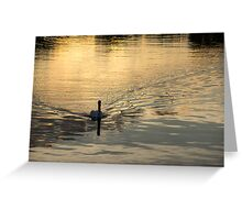 Golden Watercolor Ripples - the Gliding Swan Greeting Card