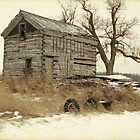 Old Wood Cabin by Timothy  Ruf