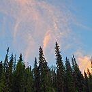 A Cariboo Sky by Skye Ryan-Evans