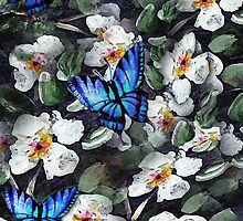 Butterflies and Dogwoods by Robin Pushe'e