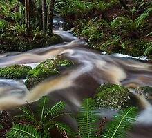 Streams Converge by robsta808