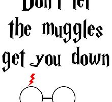 Don't Let the Muggles Get You Down by HannahJill12