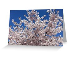 Plum Blossoms Against the Sky Greeting Card