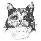 Hey there Kitty Cat!! by Emma Hampton