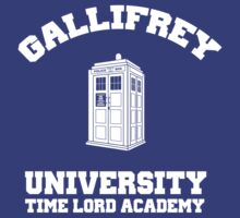 Gallifrey university - time lord academy (Dr Who) by bluestubble