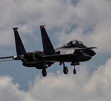 F15/E Strike Eagle by J Biggadike