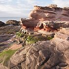 North Berwick coastline by Christopher Cullen