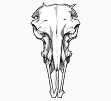 RAMS SKULL (NO HORNS) by RJSMITH