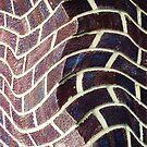 Bricks in a Twist by Christine Lake