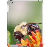 Fuzzy Bumble Bee iPad Case/Skin