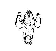 Winnie the Pooh inner Bear  Photographic Print