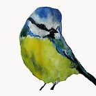 Wild English Garden Bird Blue Tit Contemporary Acrylic Painting White Edit by JamesPeart