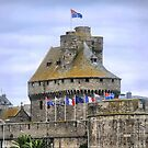 The St.Malo Wall.. ( 7 ) by Larry Lingard-Davis
